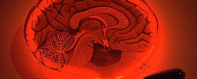 Brain Scanning will deliver Thought Crime OR Mental Superpowers